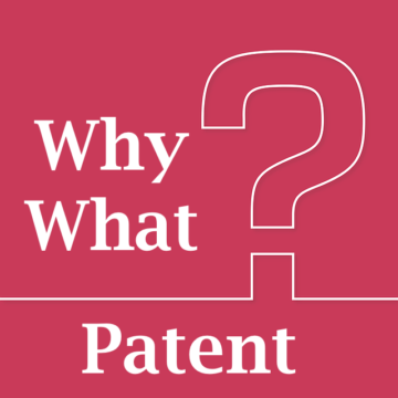 Patent Strategy, Patent Valuation, Why to Patent, What to Patent